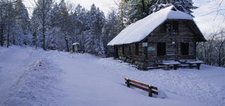 Winter sports in the northern Black Forest